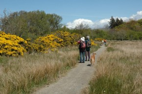 Taynish National Nature Reserve (7)